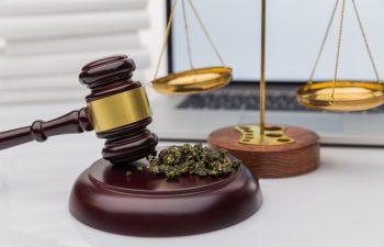 Kansas City, MO Mayor Pushing For Major Cannabis Law Reform