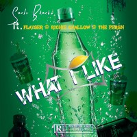 Download/ Stream Santu Blanko - What I Like
