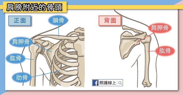 懶人包/60秒肩頸伸展這樣做!讓你快速消除筋膜痠痛 - 今周刊
