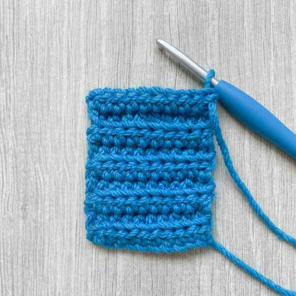 A length of blue crochet ribbing with crochet hook attached and a button hole hidden in the fabric
