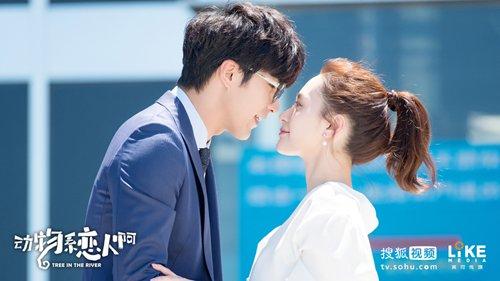 6 dramas para você ficar viciado em maio de 2018