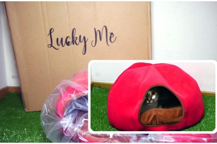 貓咪床墊推薦 | 【Lucky Me 寵物設計】 台灣製造 寵物睡墊涼墊 貓咪可拆式床墊 方便清洗的貓咪墊