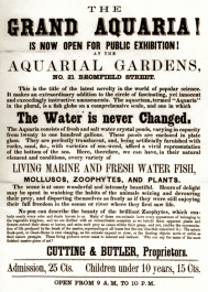 An unusual advertisement from 1859. (Courtesy of the Library of Congress)