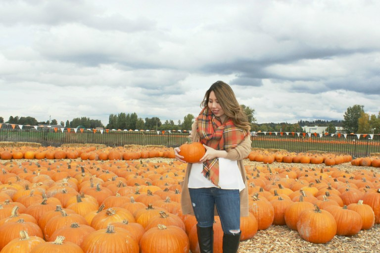 pumpkinpatch-1-0