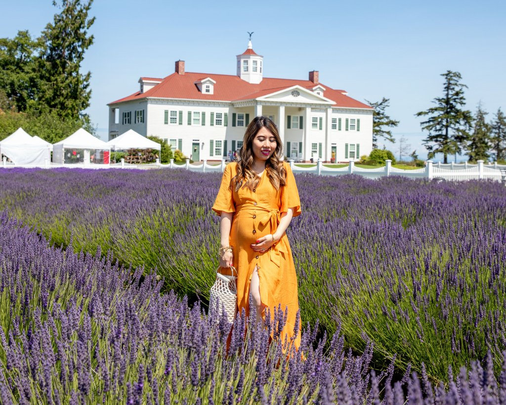 Tips For Planning Your Visit To Sequim Lavender Farms Doreen S