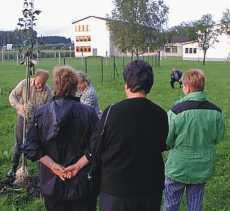 Birnenschauer