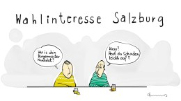 2019 wahlen in salzburg