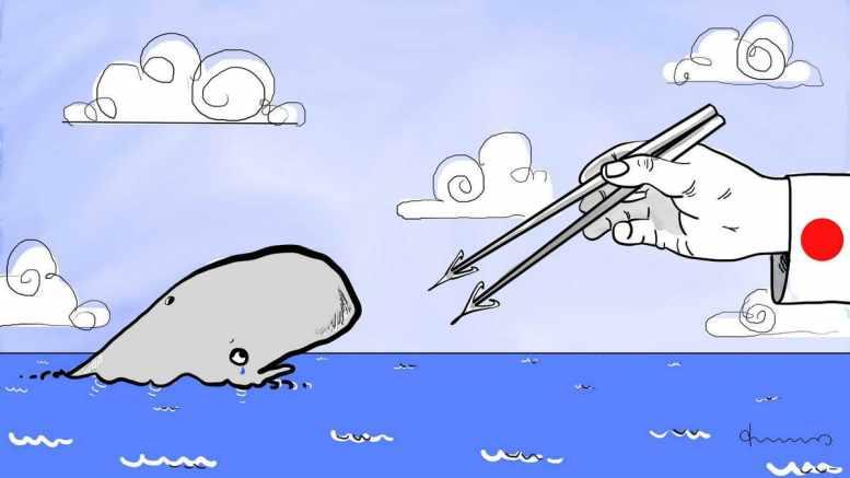 Walfleisch für die Teller