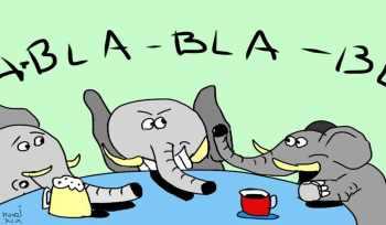 Elefantenrunde