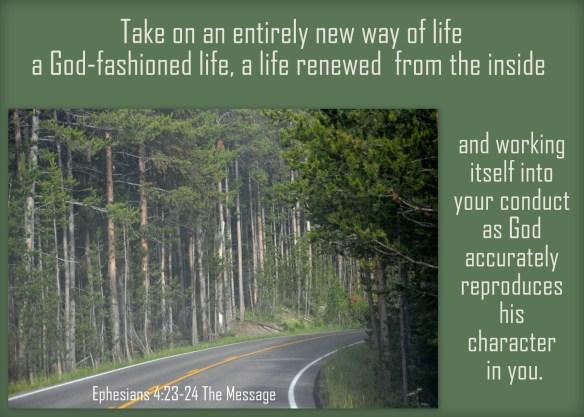 Ephesians 4-23,24