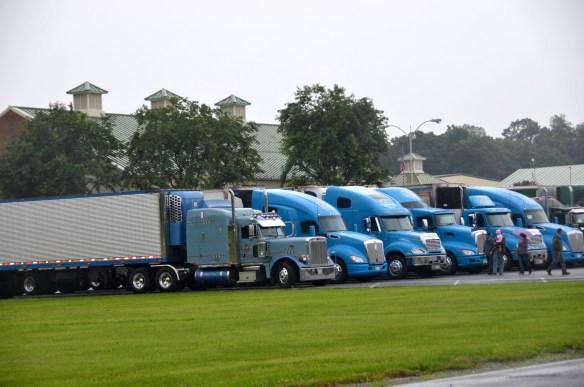 Truck Rally Trucks (14)
