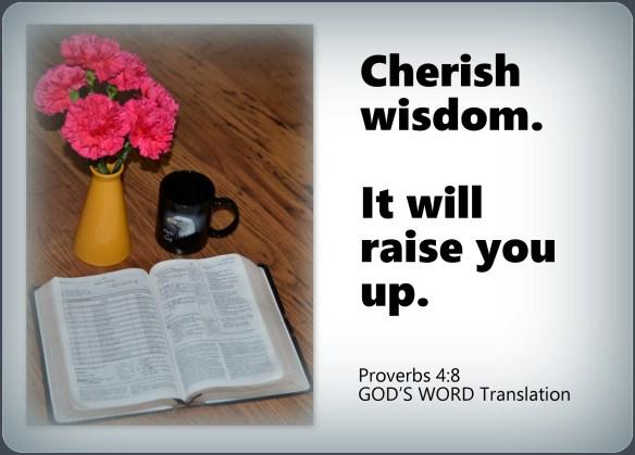 Proverbs 4-8