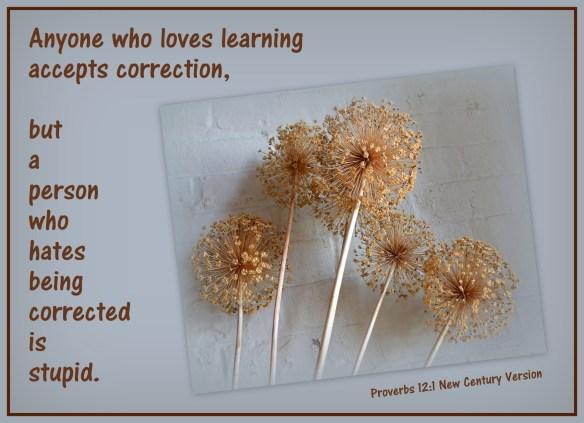 Proverbs 12-1