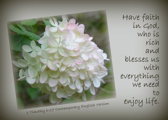 1 Timothy 6-17