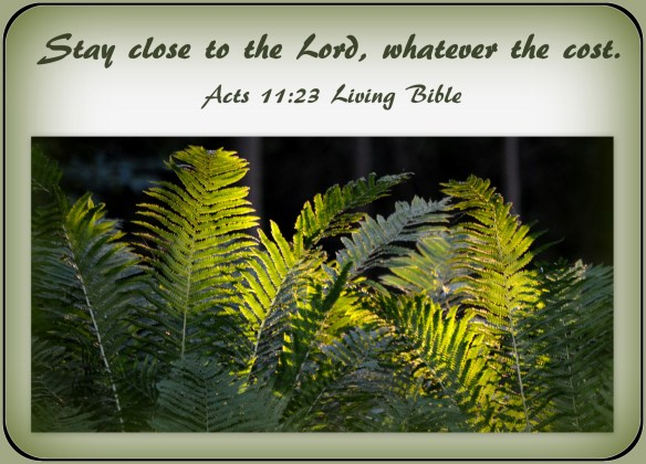 Acts 11-23