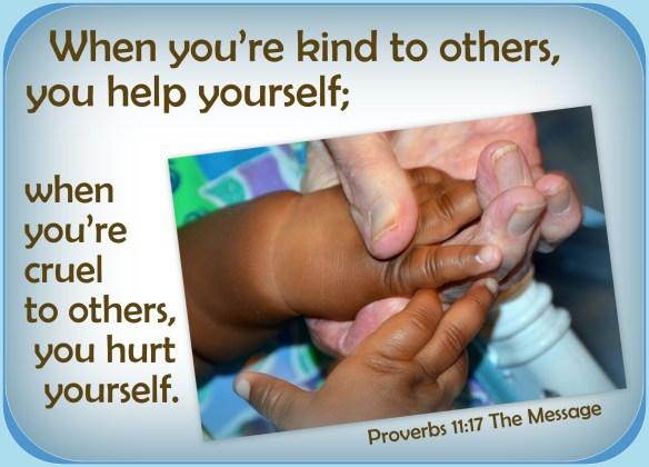 Proverbs 11-17