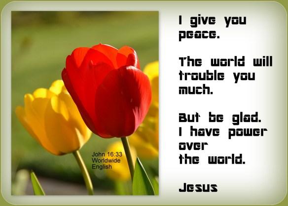John 16-33
