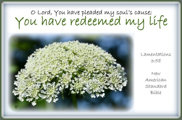 Lamentations 3-58