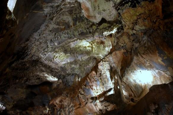 Penn's Cave (11)