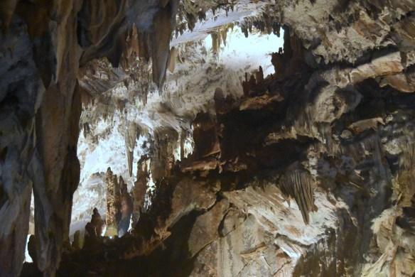 Penn's Cave (12)