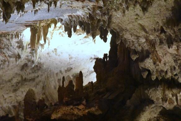 Penn's Cave (13)