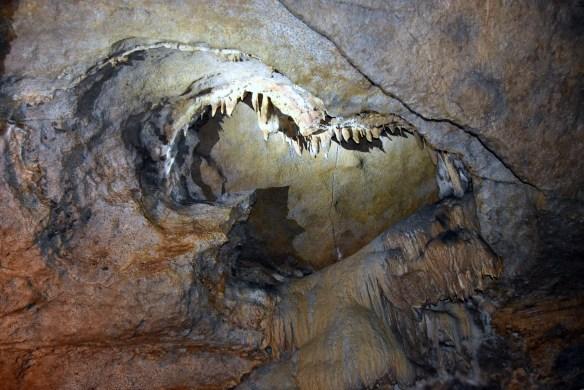Penn's Cave (26)
