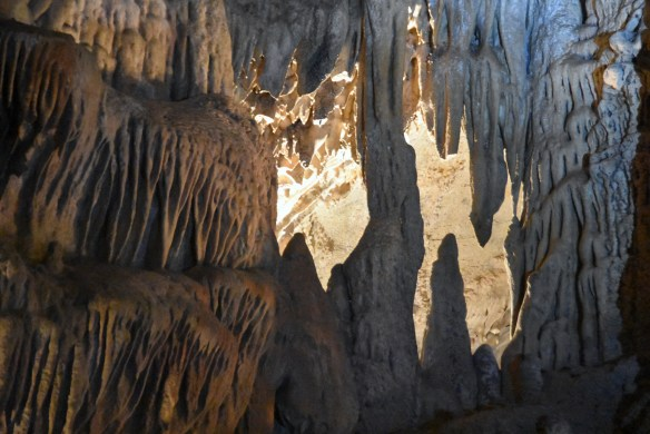 Penn's Cave (34)