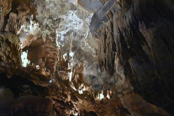 Penn's Cave (44)