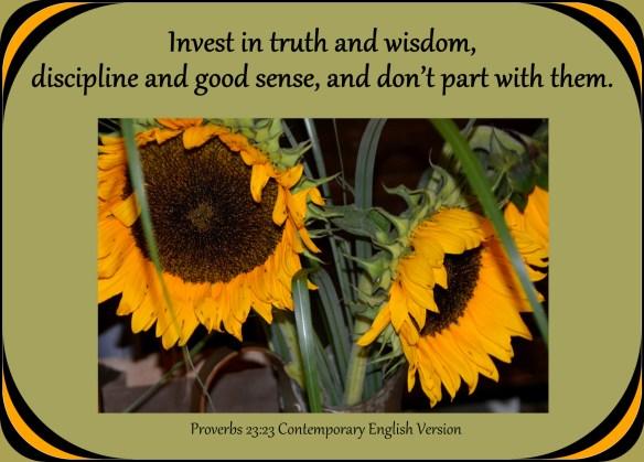 Proverbs 23-23