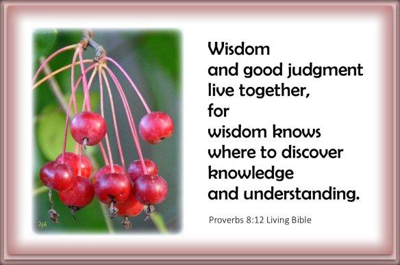 Proverbs 8-12