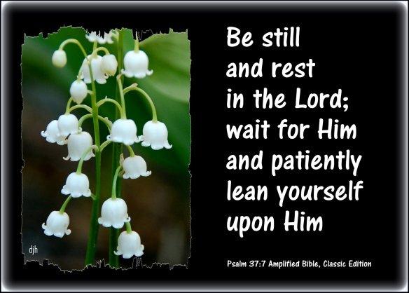 psalm-37-7