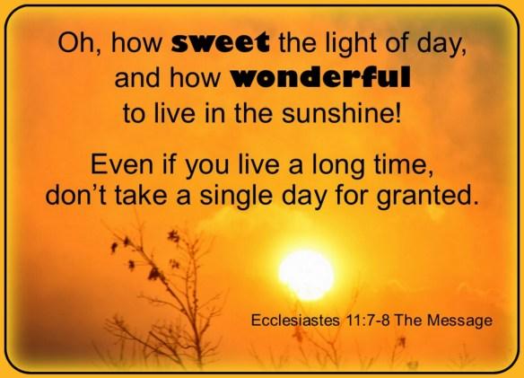 Image result for Eccl. 11:7-8