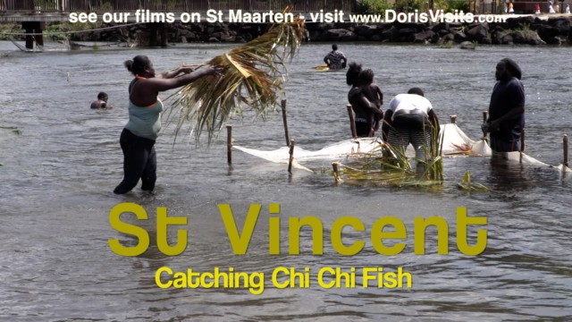 St. Vincent, East Caribbean Island – amazing fishing for Chi Chi  (Tri Tri)
