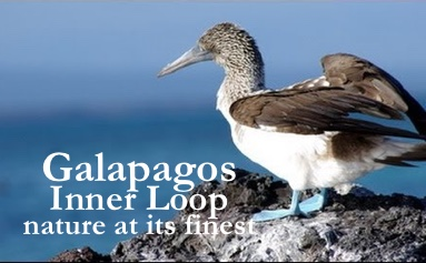 Galapagos, the Inner Loop Itinerary Route