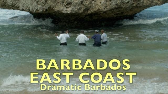Barbados. The dramatic east coast. The Atlantic.