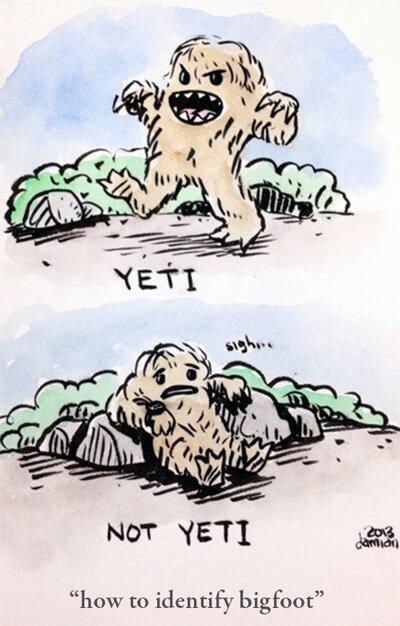 how to identify bigfoot