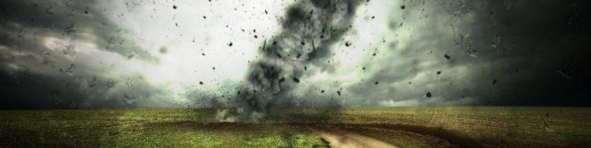 disaster movie trivia header