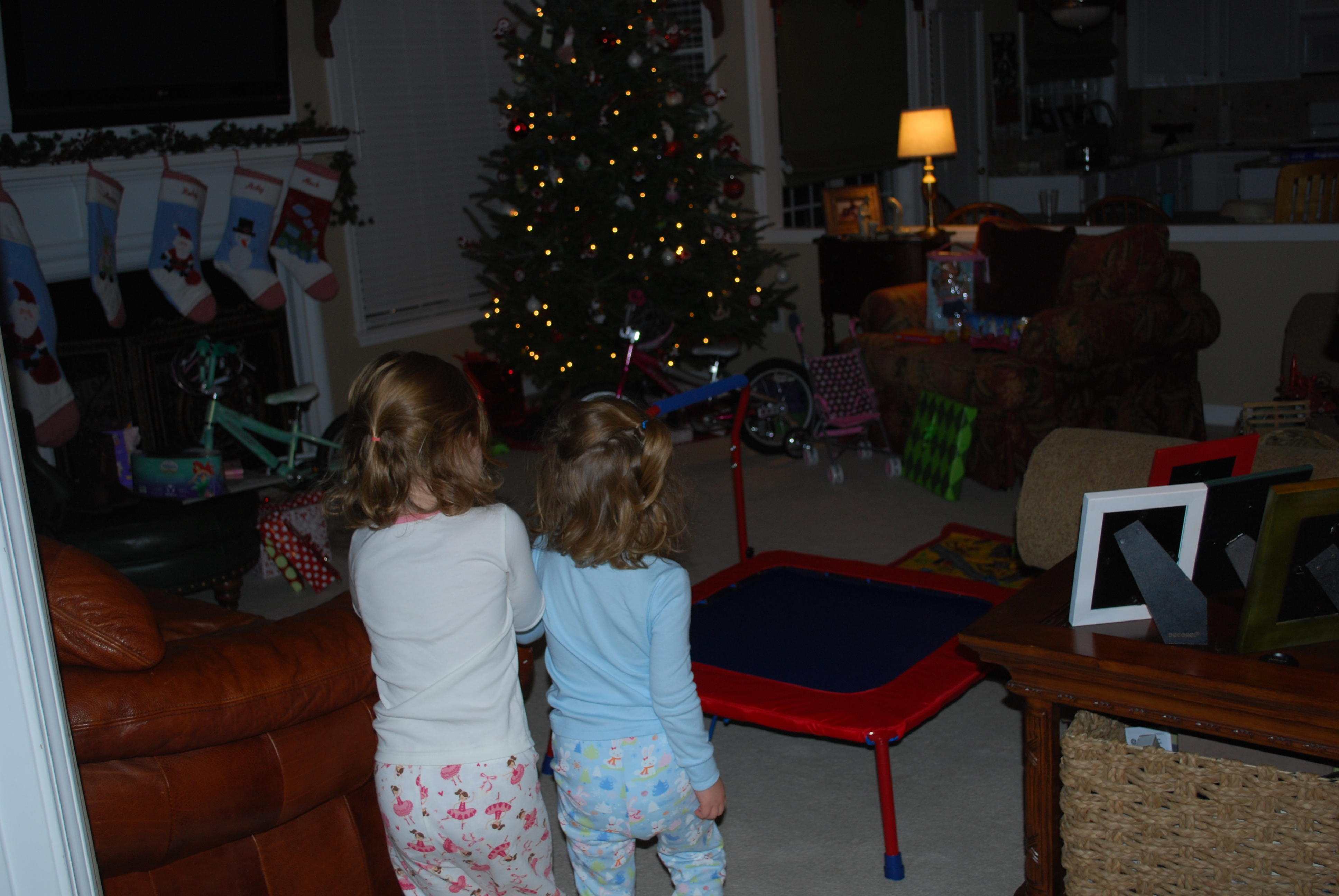 The girls having their first look around Christmas morning