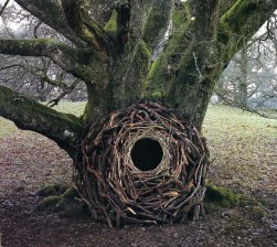 Andy Goldsworthy Environmental Sculptures | Designs & Ideas on Dornob