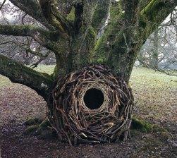 Andy Goldsworthy Environmental Sculptures | Designs & Ideas on Dornob