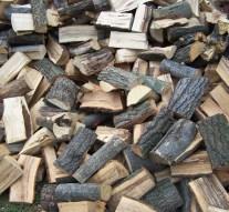 1600 tonna szociális tűzifa