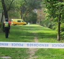 Sorozatgyilkos lehet Tatabányán?