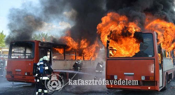 Lángra lobbantak a buszok Dorogon