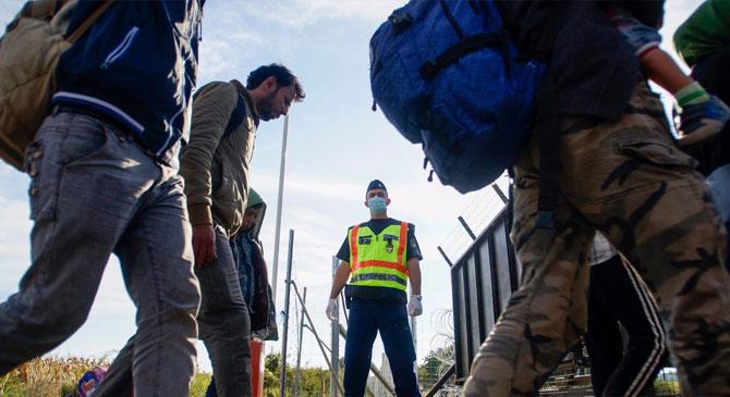 Embercsempészt és migránsokat fogtak el Bábolna térségében