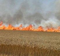 Több hektáron égett a kaszáló Bajót határában