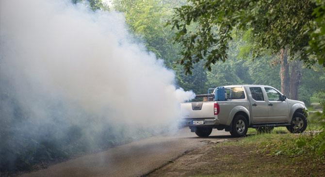 Földi szúnyoggyérítés térségünkben