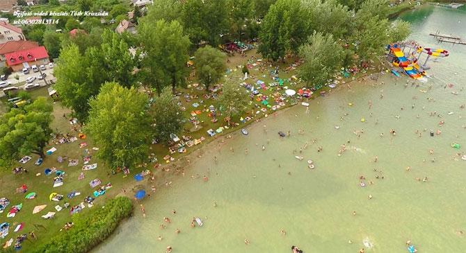 Elindul az élet a Palatinus-tó körül is