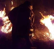 Száraz fű égett Tokodon