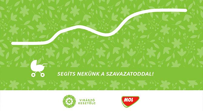 Babakocsis sétaút Kesztölcön – szavazás a MOL kutaknál