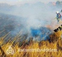 Több szabadtéri tűzhöz vonultak a tűzoltóink